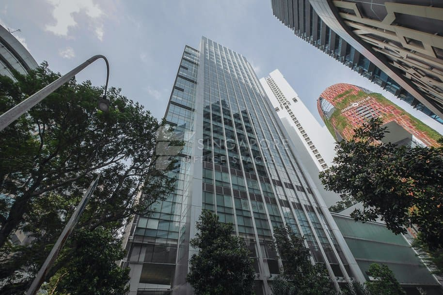 Mapletree Anson Office For Rent Singapore 480
